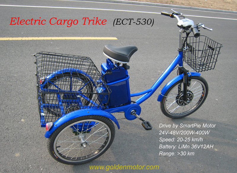 Electric cargo trike,Bike conversion kit, Electric bike motor, electric bike, hub motor